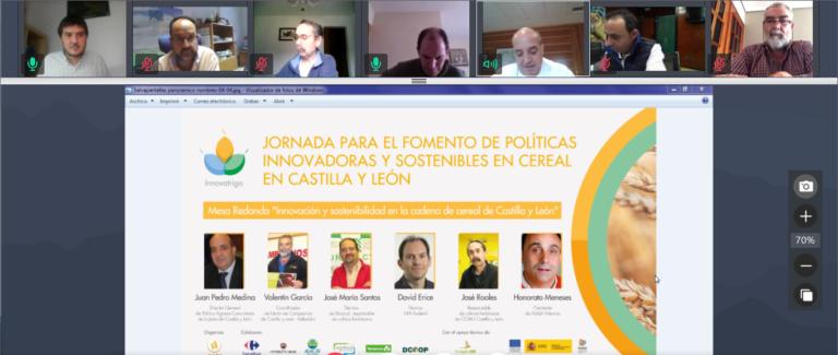 Primera jornada online para el fomento de políticas innovadoras y sostenibles en cereal en Castilla y León